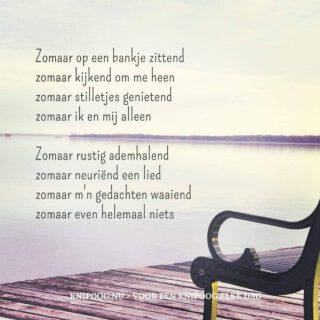 Zo'n ☀️dag...  Prachtige fotogedichten van @irmamoek_knipoog.nu www.knipoog.nu  #gedichten #taal #fotogedicht #zondag #genieten